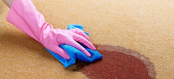 38943-cleancarpets-590